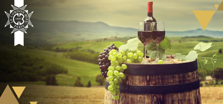 vinos_italia_banner