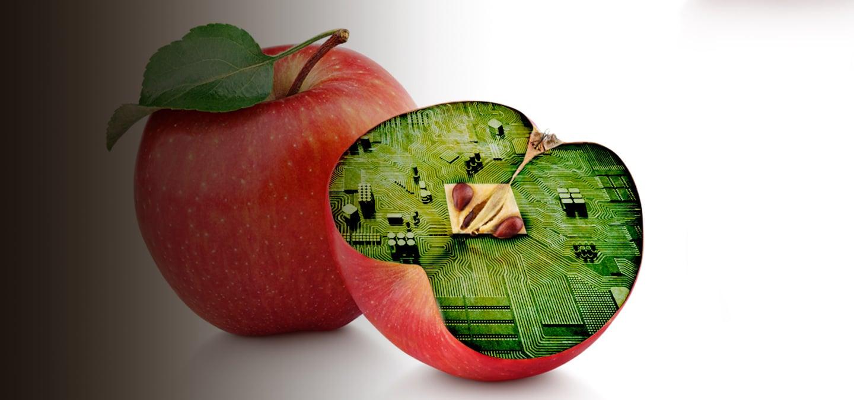Diplomado en Biotecnología en Nutrición_banner
